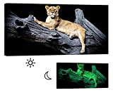 LightFairy Glow in the Dark Canvas Painting - Stretched and Framed Giclee Wall Art Print - Lion Tiger Leopard Lioness Relaxing - Master Bedroom Living Room Decor - 6 Hours Glow - 46 x 24 inch