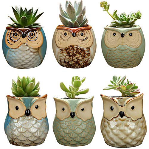 YLINGSU 2.5 Inch Owl Succulent Plant Pots Ceramic Set Cactus Plant Pot Flower Pot Container Planter Bonsai Pots with A Hole Perfect Gift Idea 6 in Set