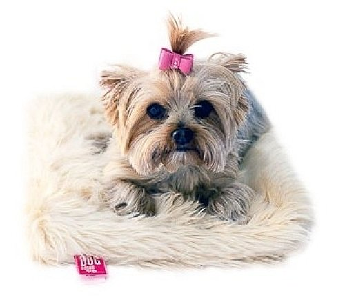 The Dog Squad Recycled Ultra Suede Pet Hair Bows, X-Small, Pink by The Dog Squad