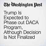 Trump Is Expected to Phase out DACA Program, Although Decision Is Not Finalized   Philip Rucker,Karoun Demirjian,Maria Sacchetti