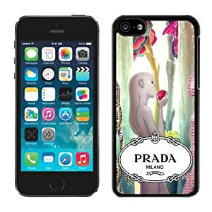 Fashionable And Beautiful Designed Case For iPhone 5C With Prada 45 Black Phone Case