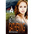 Gathering (PAVAD: FBI Romantic Suspense Book 12)