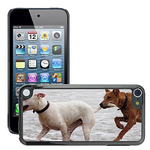 (Super Stella Slim PC Hard Case Cover Skin Armor Shell Protection // M00421764 Dogs Batons Play Bite Romp Beach // Apple ipod Touch 5 5G 5th)