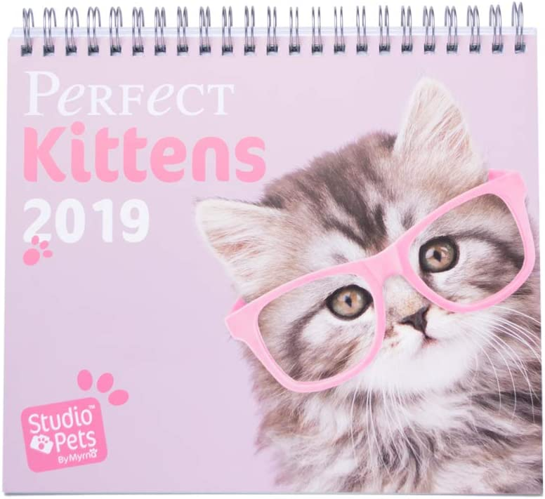 Grupo Erik - Calendario Da Tavolo 2019 Studio Pets Cats 17 X 20 Cm
