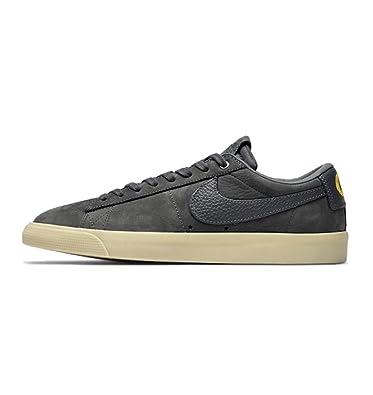 sale 32ec9 dd1ad Nike Mens SB x Anti Hero Zoom Blazer Low QS Skateboarding Shoes (9 M US