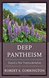 img - for Deep Pantheism: Toward a New Transcendentalism book / textbook / text book