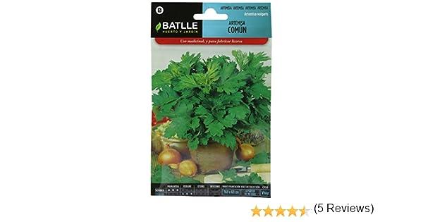 Semillas Aromáticas - Artemisa común - Batlle: Amazon.es: Jardín