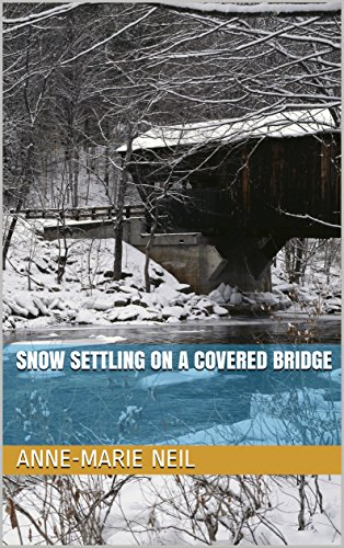 Snow Settling on a Covered Bridge