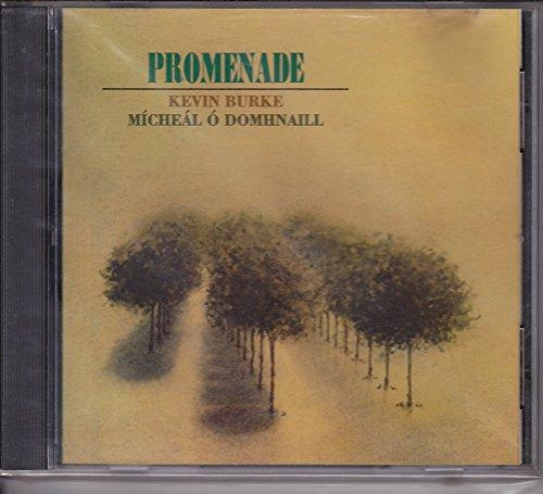 Promenade - Kevin Burke Fiddle