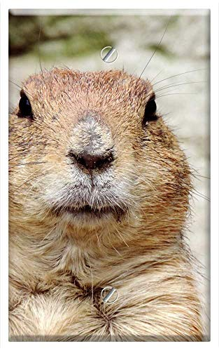 Single-Gang Blank Wall Plate Cover - Marmot Rodent Croissant Mankei Gophers Animal Head ()