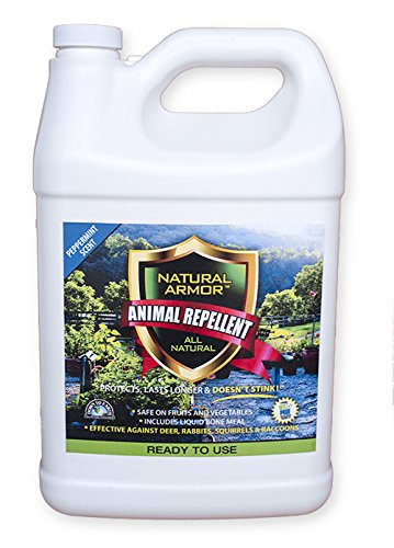 (Repellent Spray for Rodents & Animals. Cats, Rats, Squirrels, Mouse & Deer. Repeller & Deterrent for Dogs, Critters, Mice, Raccoon & Skunk. Natural Armor Peppermint Gallon Ready to Use)