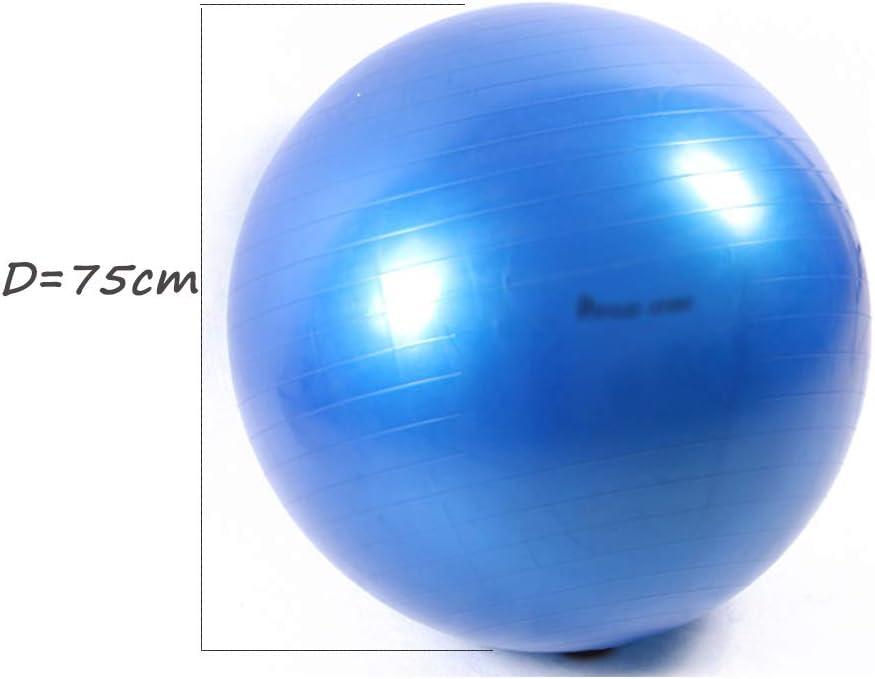 W-z-z Pelota De Yoga Ejercicio Gimnasia Fitness Pilates Ball ...