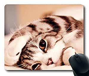 Cute Cat kitten Masterpiece Limited Design Oblong Mouse Pad by Cases & Mousepads