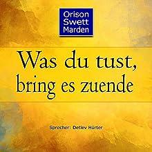 Was du tust, bring es zuende Hörbuch von Orison Swett Marden Gesprochen von: Detlev Hürter