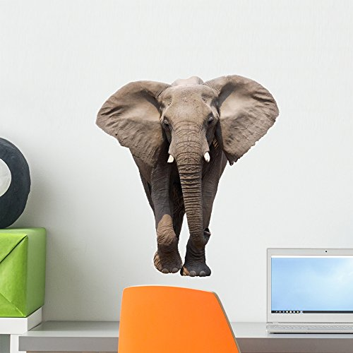 Wallmonkeys African Elephant Wall Decal Peel and Stick Animal Graphics (18 in H x 12 in W) WM79793