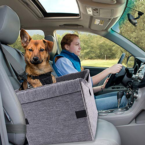 petisfam Pet Booster Car Seat for Small Dogs