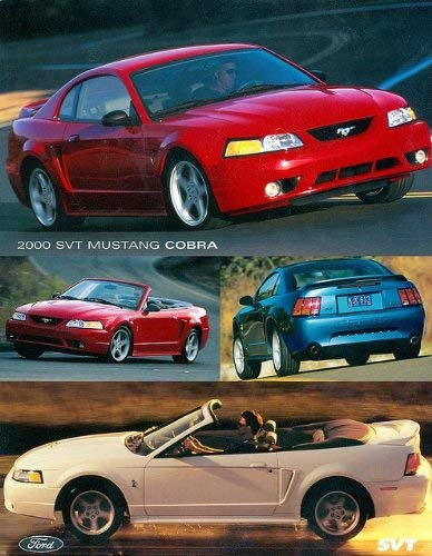 2000 FORD SVT MUSTANG COBRA COUPE & CONVERTIBLE VINTAGE COLOR SALES BROCHURE CARD - BEAUTIFUL - USA - EXCELLENT ORIGINAL !!