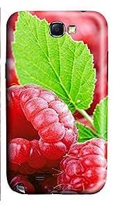 Samsung Note 2 Case Fresh Strawberry 3D Custom Samsung Note 2 Case Cover