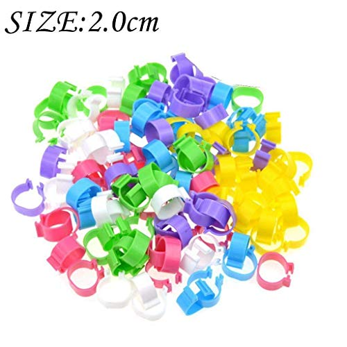 DerBlue 120 Pieces Colored Plastic Poultry Leg Bands Bird Chicks Ducks Chicken Clip-on Rings (Inner Diameter About 2.0cm,Suitable for Poultry from 2 Pound to 8 pounds) (Plastic Chicken Rings)