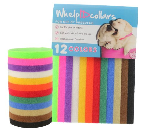 WhelpIDcollars - Puppy ID Bands - 12 Colors | Made from VELCRO Brand fastener | Small Size 9 in (Puppy Id Bands)