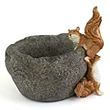 Top Collection Miniature Fairy Garden and Terrarium Squirrels on Functional Stone Flower Pot for Succulents, 4.75-Inch For Sale