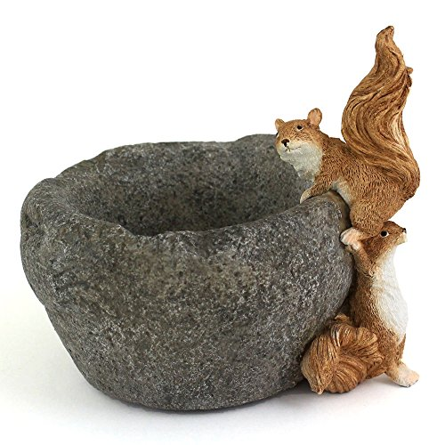 Top Collection Miniature Fairy Garden and Terrarium Squirrels on Functional Stone Flower Pot for Succulents, 4.75-Inch