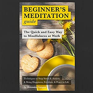 Beginner's Meditation Guide: The Quick and Easy Way to Mindfulness at Work Audiobook