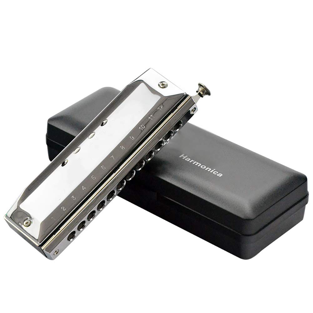 MG.QING Chromatic Harmonica C Key 10 Holes 40 Tone Organ Silver with Exquisite Durable Box