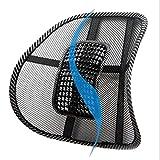 AMPM24-MX Universal 12V Auto Eléctrico Masaje Automóvil Cintura Asiento Respaldo Cojín Apoyo Lumbar Respaldo Vehículo Interior Suministros
