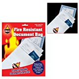 Fire Resistant Document Bag – 9 inch by 14 inch (fls), Health Care Stuffs