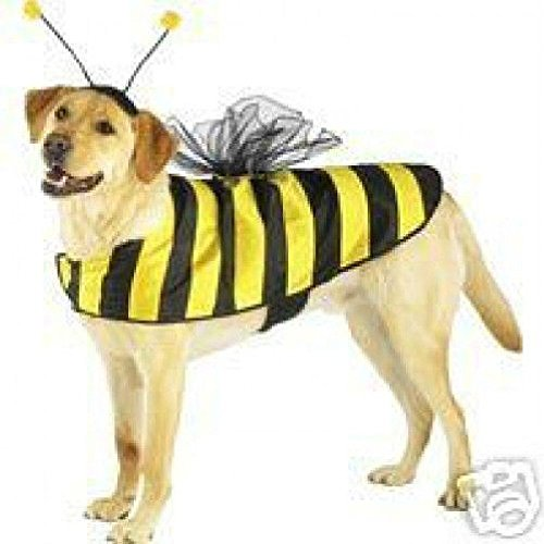 [Defonia Casual Canine Bumble Bee Dog Halloween Costume XS S M L XL] (Large Dog Spider Halloween Costume)