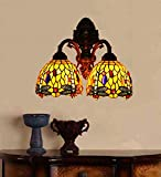 Makenier Vintage Tiffany Style Red Stained Glass Dragonfly Wall Lamp Wall Fixture - 7 Inches Double Lampshade