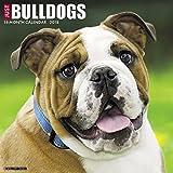 Just Bulldogs 2018 Wall Calendar (Dog Breed Calendar)