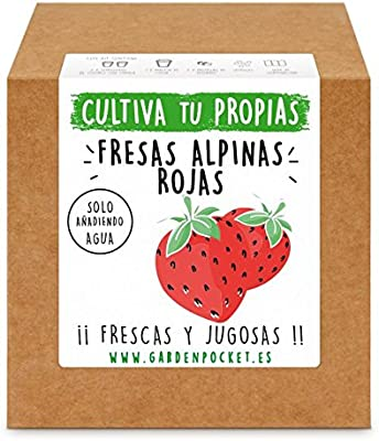 Garden Pocket - Kit Cultivo Fresas Rojas: Amazon.es: Jardín