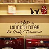 Vinyl Art Laundry Today Or Naked Tomorrow English Proverbs Wall Sticker Decals Home Decoration