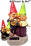Brilliant & Mo(TM) Loving Couple Garden Gnome holding hearts and flower Garden Solar Light For Sale