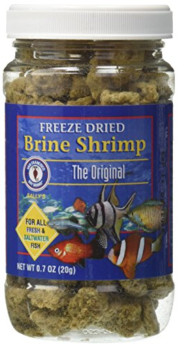 Brine Shrimp Diet - San Francisco Bay Brand ASF71109 Freeze Dried Brine Shrimp for Fresh and Saltwater Fish, 20gm