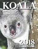 Koala 2018 Calendar (UK Edition)