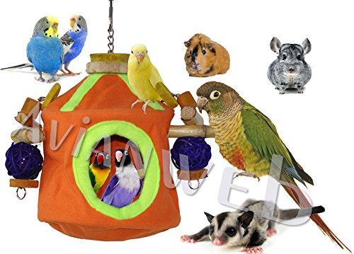 Parrot Hut - 9