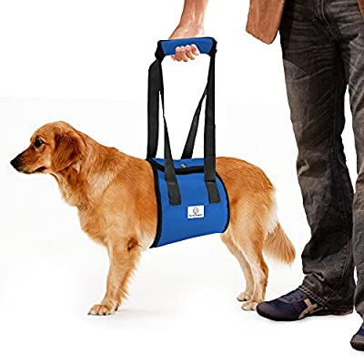 Dog Limping Lift Harness Help up Sling Veterinarian Approved for Old K9 Cruciate Ligament Support, Canine Arthritis, ACL Rehabilitation, Poor Stability, Joint Injuries, Mobility aid & Recovery