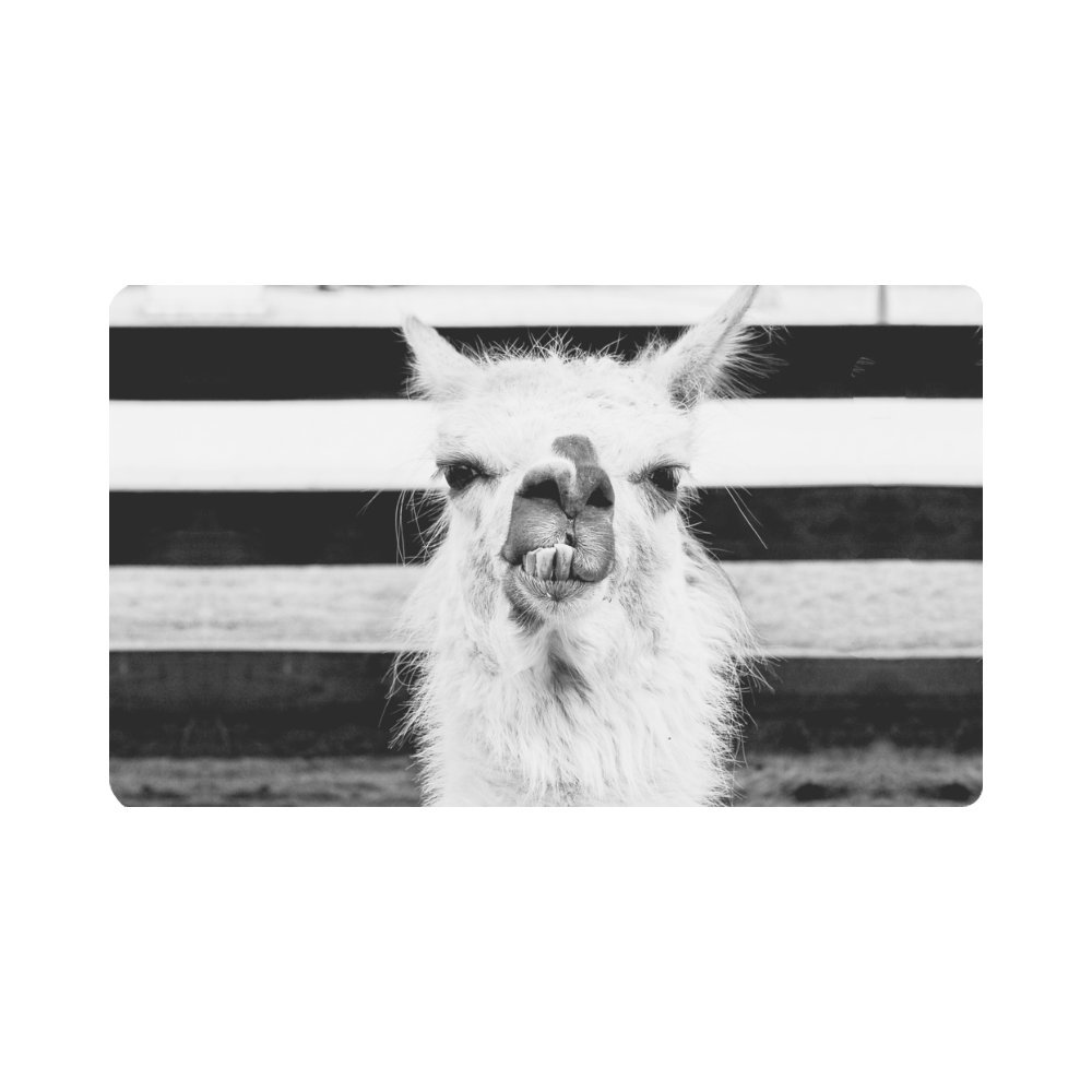 InterestPrint Vintage Llama with Attitude Animal Art Doormat Non-Slip Indoor And Outdoor Door Mat Rug Home Decor, Entrance Rug Floor Mats Rubber Backing, Large 30''(L) x 18''(W)