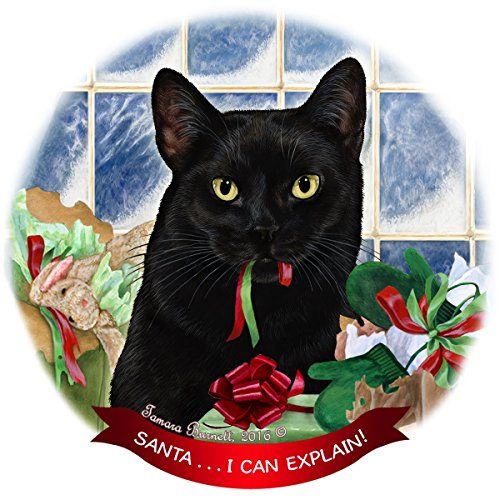 Black Cat Porcelain Hanging Ornament Pet Gift 'Santa.. I Can Explain!' for Christmas Tree and Year Round