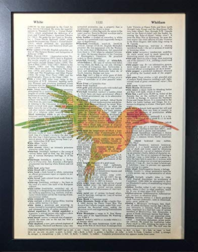 """FRINTI/™ Fully Framed Approximately 9x12/"""" Psychedelic Hummingbird Pop Art Print On an Original and Authentic Antique Dictionary Page"""