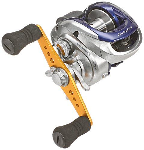 SHIMANO Salty One HG Right 027818