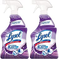 Lysol Mildew Remover Spray with Bleach, 32 Ounce (Pack of 2)