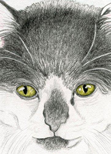 ACEO ATC Tuxedo Cat Drawing Original Art-Carla (Aceo Original Art)