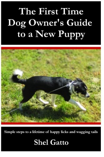 The First Time Dog Owner's Guide to a New Puppy (Best Dogs For First Time Dog Owners)