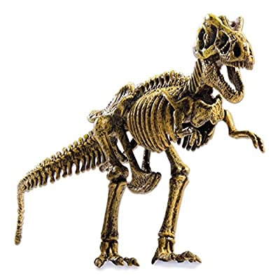 Wonderology – Science Kit – Fossil Discoveries: Toys & Games