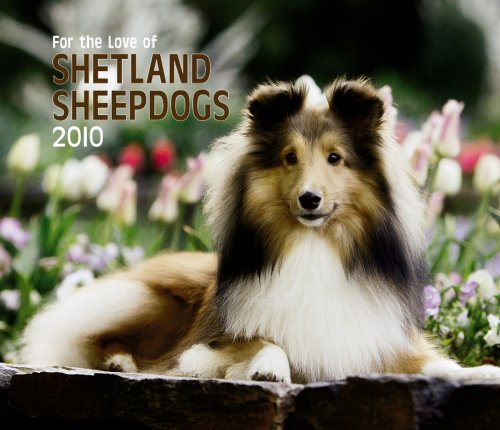 Shetland Sheepdogs, For the Love of 2010 Deluxe Wall (Multilingual (Sheepdog 2010 Calendar)
