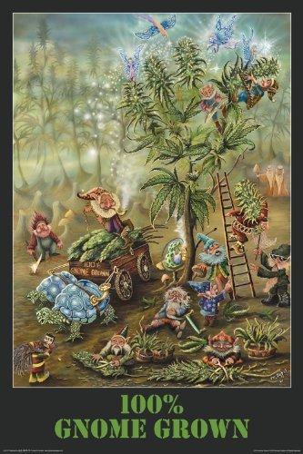 NMR/Aquarius Gnome Grown Poster